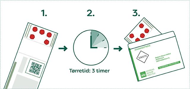 """Prøven skal tørre helt. Det er vigtigt, at blodet på filterpapiret er helt tørt inden det sendes til SSI. Blodpletterne skal tørre ved stuetemperatur i ca. tre timer. Undgå direkte sollys og varme. Brug helst SSI's særlige til PKU-prøvekuvert, mærket med """"Blodprøve fra nyfødte"""""""